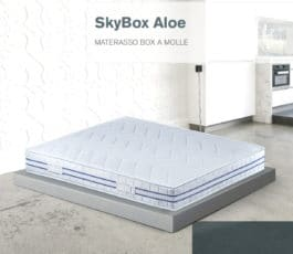 SkyBox Aloe